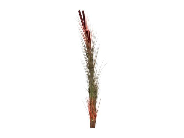 mpn82505856-europalms-reed-grass-with-cattails-light-brown-artificial-152cm-MainBild