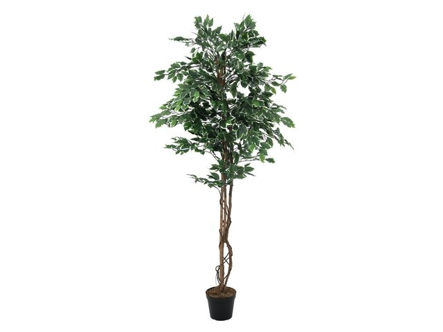 mpn82506116-europalms-silberficus-benjamini-kunstpflanze-180cm-MainBild