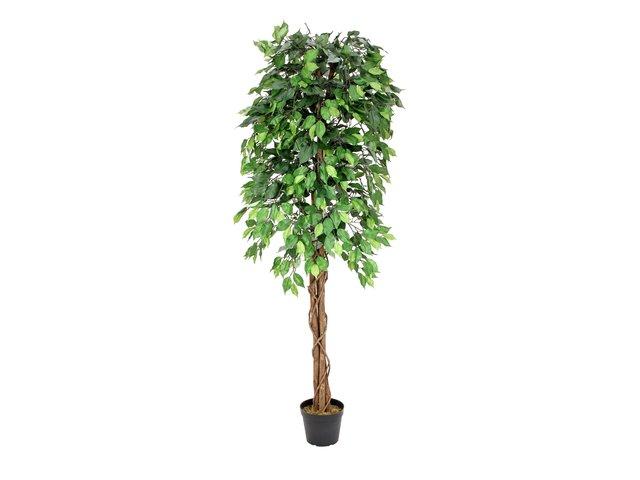 mpn82506126-europalms-ficus-benjamini-multi-stamm-kunstpflanze-180cm-MainBild