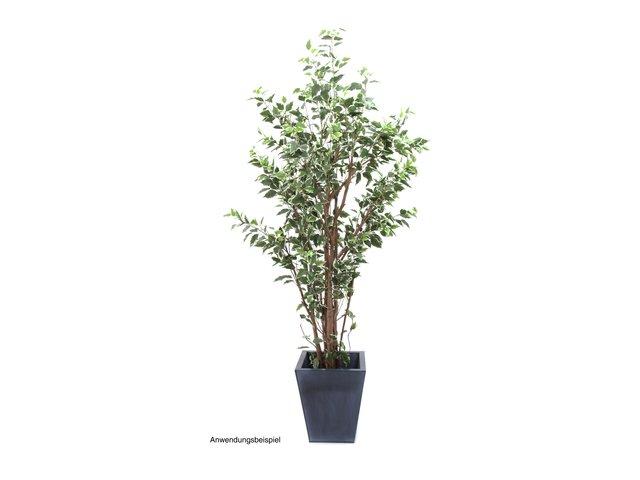 mpn82506138-europalms-ficus-benjamini-deluxe-kunstpflanze-240cm-MainBild