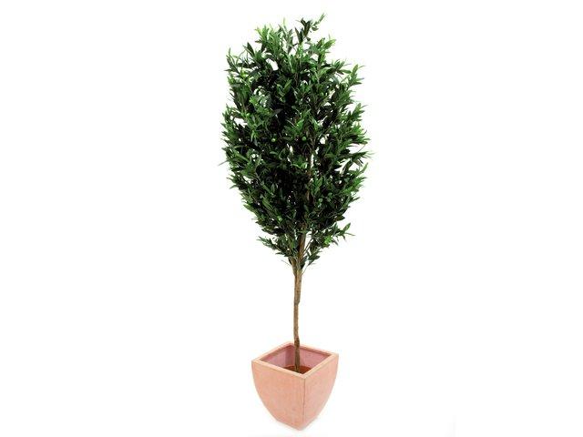 mpn82506412-europalms-olivenbaum-mit-fruechten-kuenstlich-200cm-MainBild