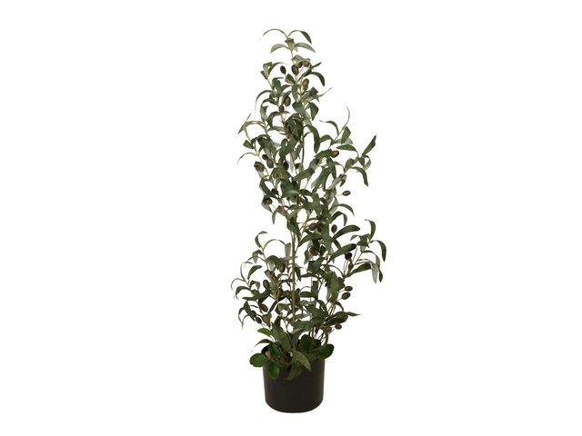mpn82506422-europalms-olivenbaeumchen-kunstpflanze-90-cm-MainBild