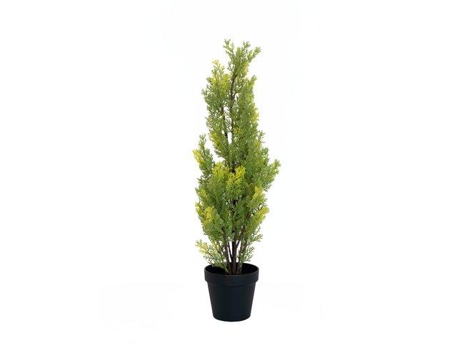 mpn82606959-europalms-zypresse-leyland-kunstpflanze-60cm-MainBild