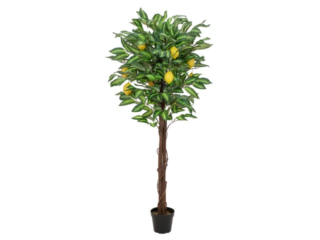 mpn82507815-europalms-lemon-tree-artificial-plant-150cm-MainBild