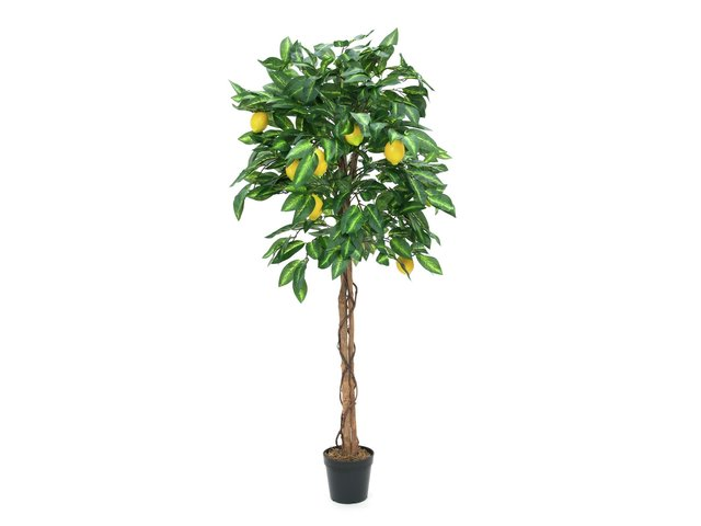 mpn82507816-europalms-lemon-tree-artificial-plant-180cm-MainBild