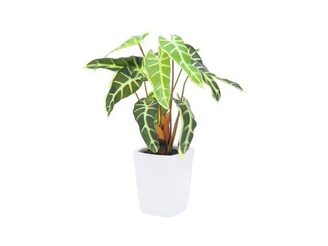 mpn82508455-europalms-caladium-kunstpflanze-gruen-gelb-35cm-MainBild