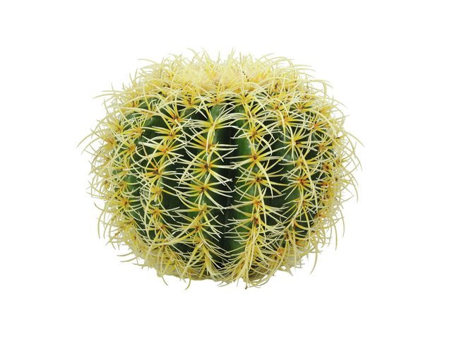 mpn82808011-europalms-barrel-cactus-artificial-plant-green-27cm-MainBild