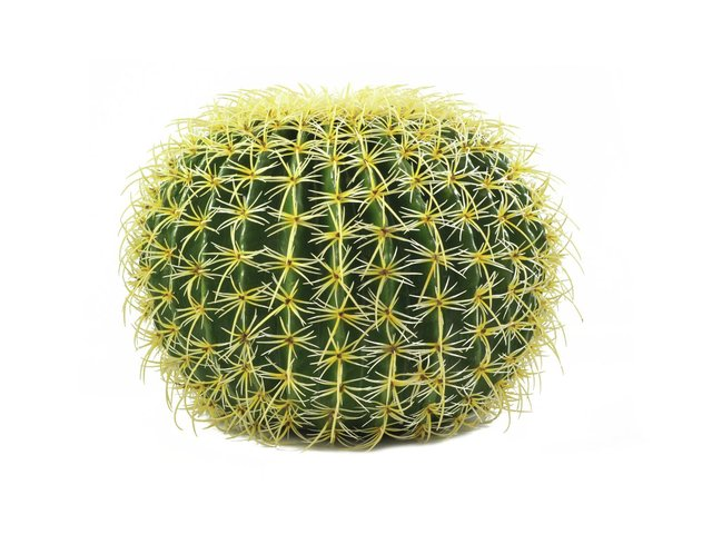 mpn82808012-europalms-barrel-cactus-artificial-plant-green-37cm-MainBild