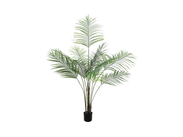 mpn82509442-europalms-areca-palm-with-big-leaves-artificial-plant-185cm-MainBild