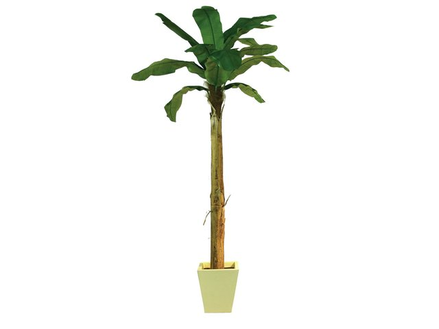 mpn82509509-europalms-banana-tree-artificial-plant-270cm-MainBild