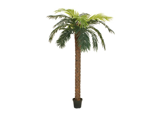 mpn82509725-europalms-phoenix-palme-deluxe-kunstpflanze-300cm-MainBild