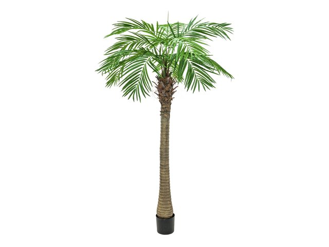 mpn82510722-europalms-phoenix-palm-tree-luxor-artificial-plant-240cm-MainBild