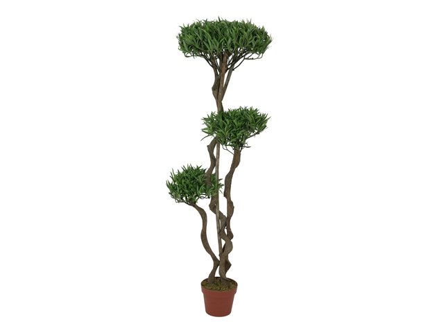 mpn82511510-europalms-bonsai-palmenbaum-multistamm-kunstpflanze-130cm-MainBild