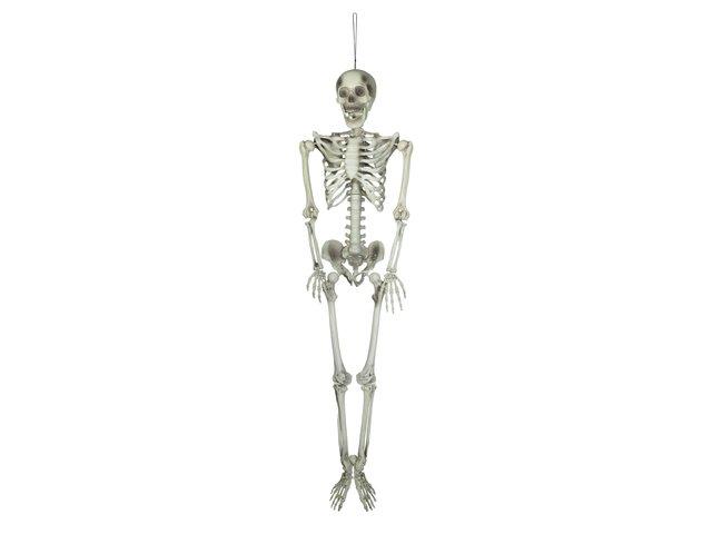 mpn83314595-europalms-halloween-skelett-150-cm-MainBild