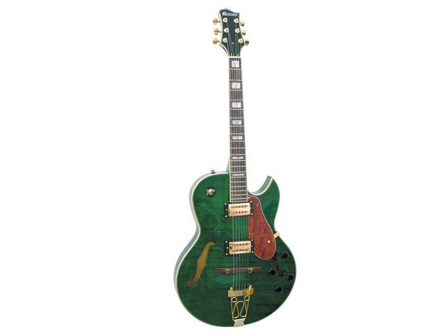 mpn26216061-dimavery-sh-660-hollow-body-green-MainBild