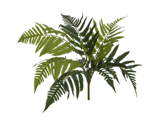 mpn82519421-europalms-lady-fern-artificial-plant-60cm-MainBild