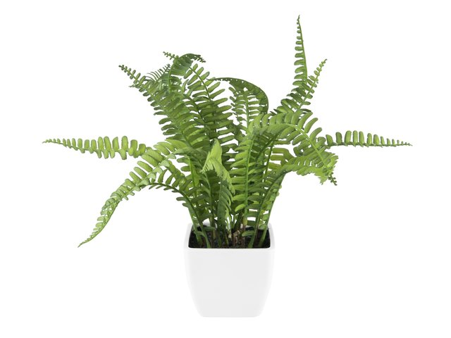 mpn82519945-europalms-boston-fern-in-pot-artificial-plant-28-cm-MainBild
