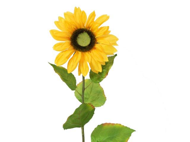 mpn82522097-europalms-sonnenblume-kunstpflanze-70cm-MainBild