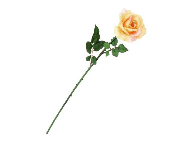 mpn82527014-europalms-rose-kunstpflanze-cremefarben-MainBild