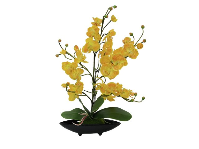 mpn82530338-europalms-orchid-arrangement-eva-artificial-yellow-MainBild
