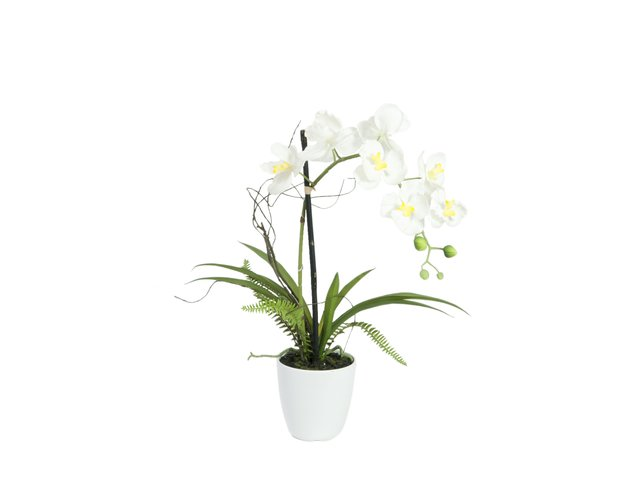 mpn82530346-europalms-orchid-arrangement-1-artificial-MainBild