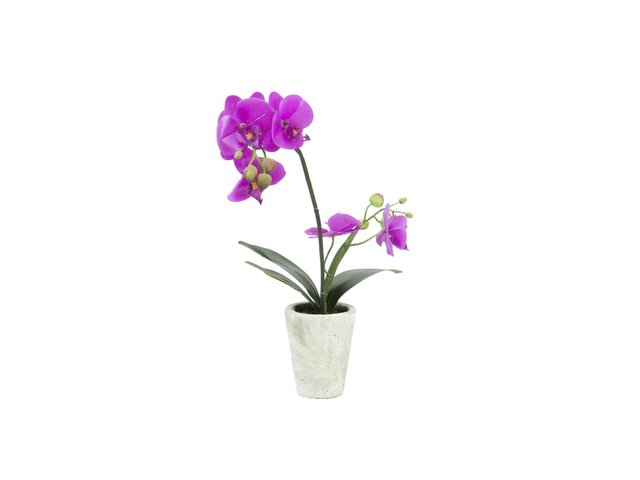 mpn82530348-europalms-orchid-arrangement-3-artificial-MainBild