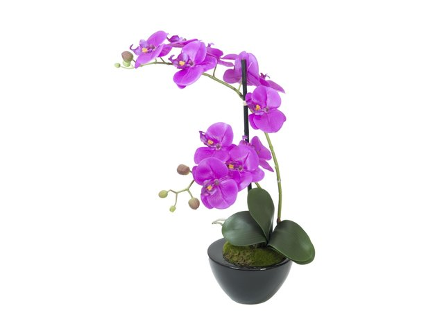 mpn82530349-europalms-orchid-arrangement-4-artificial-MainBild