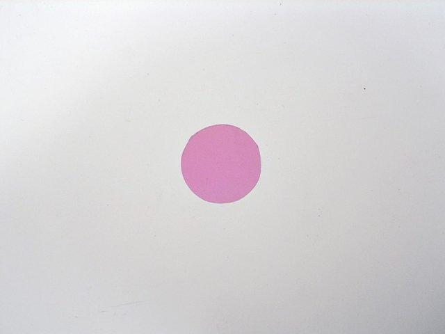 mpne3038123-dichro-pink-fuer-ts-150-MainBild