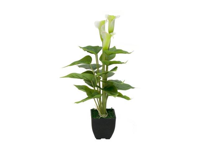 mpn82540347-europalms-mini-calla-artificial-plant-white-43cm-MainBild