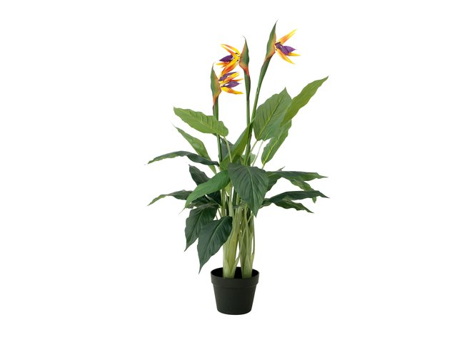 mpn82540502-europalms-bird-of-paradise-flower-artificial-plant-90cm-MainBild