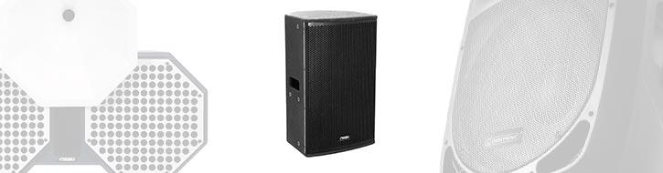 Fullrange speakers