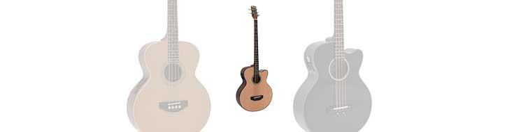 Acoustic basses